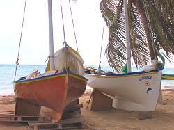 bateau a voile traditionnelle, Guadeloupe